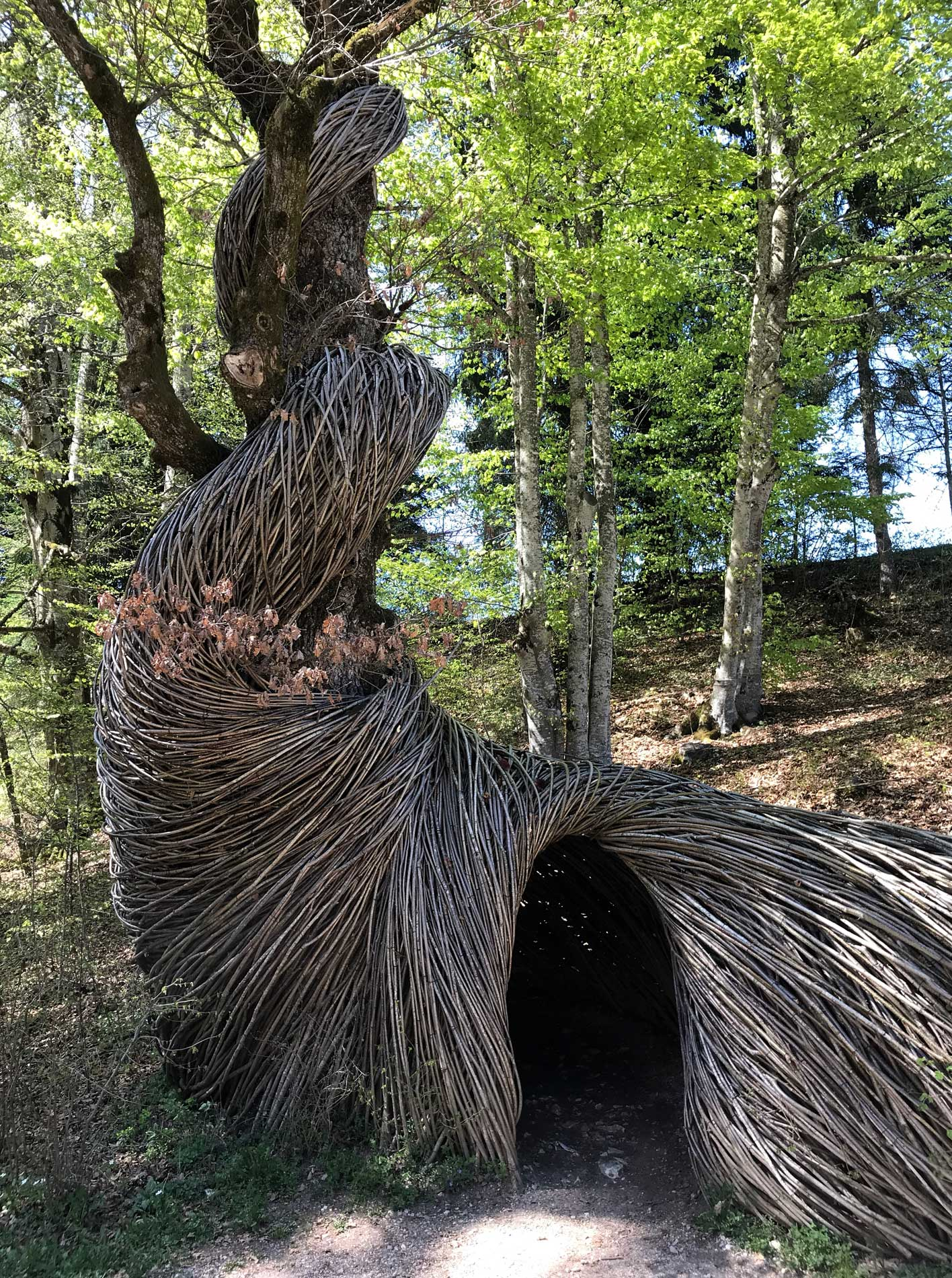 Arte-Sella-Valsugana-land-art-Beckers-2015