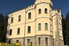 Parco-delle-Terme-Levico-Valsugana-Villa-Paradiso-tarassaco-giallo
