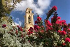 Choirokoitia-campanile-della-chiesa-che-spunta-tra-due-buganvillee-rosse-e-bianche