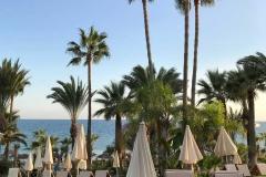 amathus-beach-hotel-limassol-cipro-lungomare-palme-sdraio