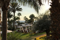amathus-beach-hotel-limassol-cipro-spiaggia-lungomare-palme-sdraio
