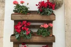 centro-storico-di-cisternino-decorazione-con-fiori-e-gerani