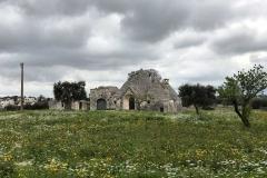 trullo-nella-campagna-di-cisternino-primavera-campo-fiorito-nuvole-grigie