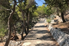 hvar-via-giardino-mediterraneo-sotto-la-fortezza