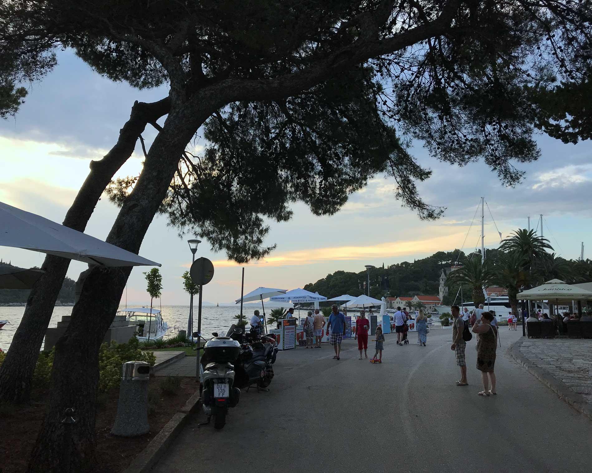 Cavtat-Dubrovnik-Croazia-via-lungomare-pini-marittimi