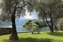 isola-comacina-vista-tra-gli-ulivi-del-lido-di-ossuccio-lago-di-como