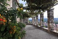 Rocca-di-Angera-famiglia-Borromeo-porticato-belvedere-ingresso-rosa-canina