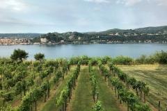 Rocca-di-Angera-vista-del-giardino-viti-Lago-Maggiore-Arona