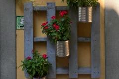 Lovere-Piazza-Vittorio-Emanuele-II-fiori-decorazione-negozio