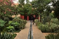 il-giardino-segreto-Marrakech-rue-mouassine-giardino-esotico