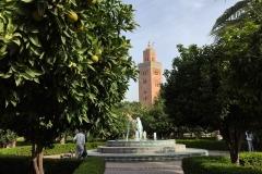 giardini-della-koutoubia-marrakech-marocco-minareto-fontana-agrumi