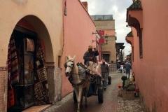 Marrakech-medina-rue-mouassine-negozio-asino-carro-persona-che-saluta