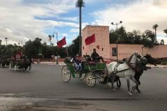 mura-medina-marrakech-carri-cavalli-bandiere-marocco