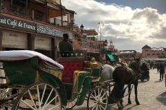 Piazza-Jamaa-el-fna-marrakech-medina-carrozza-cavalli-cielo-nuvole-cafe-de-france