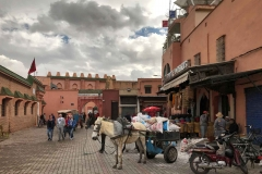 Marrakech-medina-medersa-ben-youssef-esterno-asino-muratori-piazza