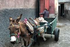 souk-Medina-Marrakech-Marocco-asino-carretto-nella-via-uomo
