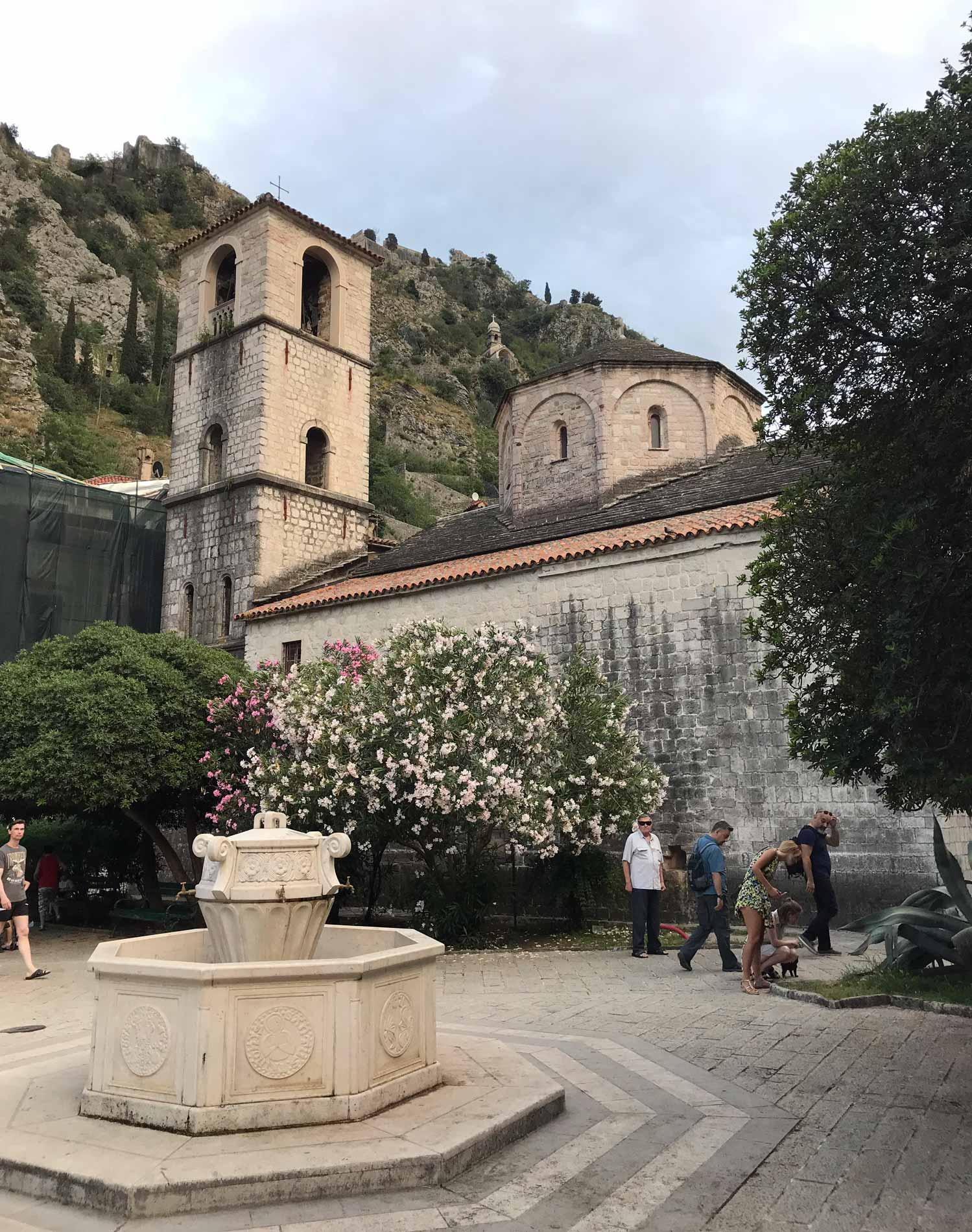 Kotor-Montenegro-Collegiata-di-Santa-Maria-Pjaca-Od-Drva-oleandri-campanile