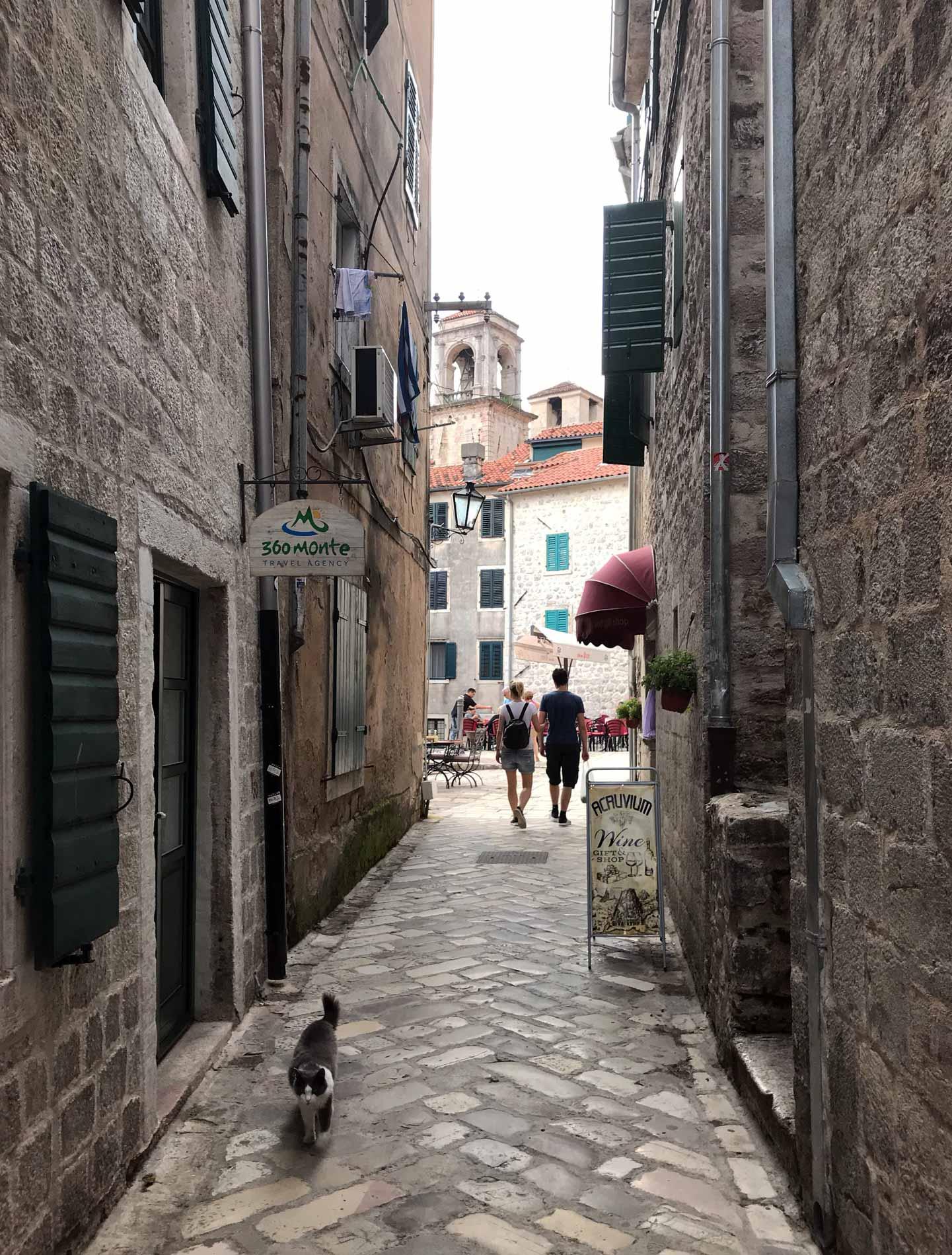 Cattaro-Montenegro-scorcio-Ulica2-campanili-Cattedrale-di-San-Trifone