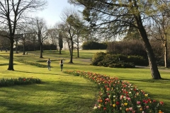 parco-giardino-sigurta-distesa-di-tulipani-colorati-in-fiore