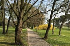 parco-giardino-sigurta-vialetto-di-ingresso