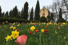 scorcio-delleremo-di-parco-sigurta-coi-tulipani-e-narcisi