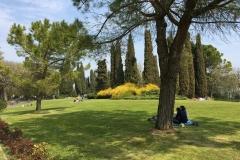 scorcio-di-parco-sigurta-famiglia-che-fa-un-picnic