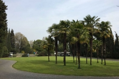 zona-delle-piante-officinali-palme-parco-sigurta