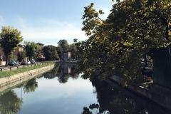 Pavia-Naviglio-Pavese-tranquillo-albero-riflesso