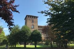 Pavia-Parco-Visconteo-alberi-torre-Castello-Visconteo-cielo-azzurro