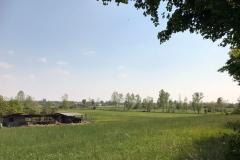 borgo-di-soncino-campagna-con-fattoria-e-vacche