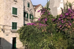 palazzo-di-diocleziano-spalato-case-con-giardino-verde-accanto-alla-cattedrale