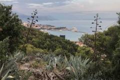 monte-marjan-spalato-vista-sul-porto-tra-la-vegetazione-mediterranea