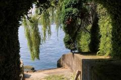 Blevio-lago-di-como-spiaggia-belvedere-salice-piangente-cemento