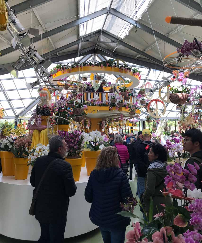 keukenhof-padiglione-beatrix-mostra-di-orchidee-flower-power