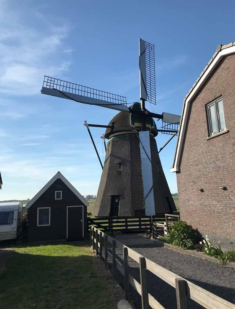 mulino-a-vento-in-una-fattoria-nei-dintorni-di-lisse-olanda