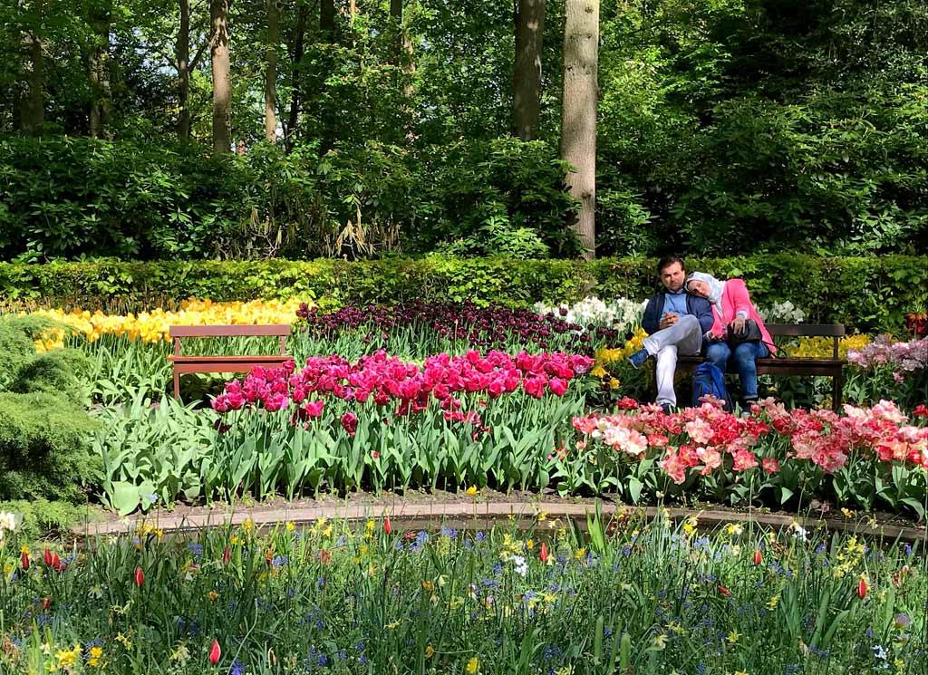 coppia-di-innamorati-su-una-panchina-del-parco-keukenhof-in-olanda