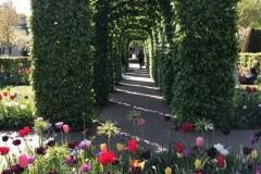 arcate-geometriche-del-giardino-di-parco-keukenhof-padiglione-oranje-nassau