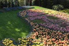 keukenhof-2019-flower-power-con-fiori-e-tulipani-disegnano-una-ragazza