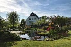 bellissima-casa-nella-natura-vicino-a-lisse-in-olanda
