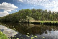 riflesso-nel-canale-vicino-a-lisse-in-olanda